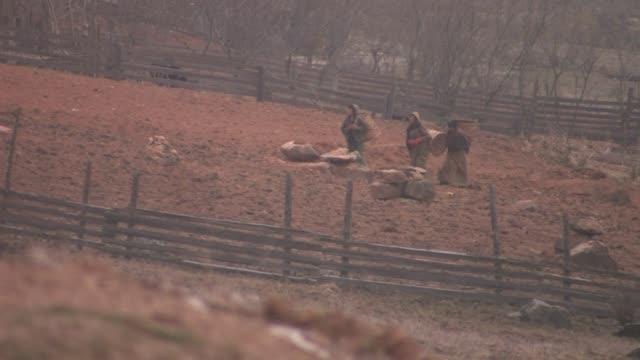 women carrying baskets on their backs walking across a plowed field. - korb stock-videos und b-roll-filmmaterial
