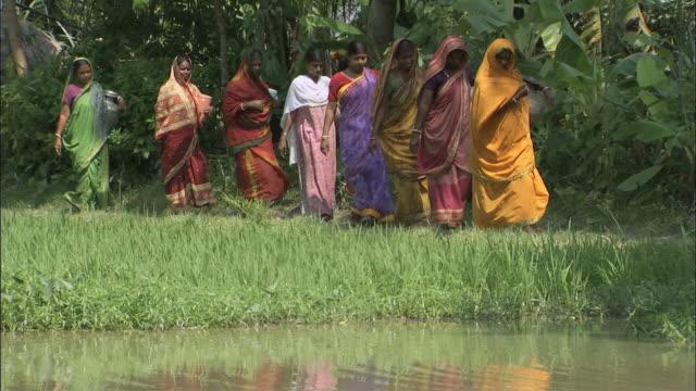 ws pan zo zi women carrying clay jars stroll along waterway /delhi, national territory of delhi, india - bangladeshi culture stock videos & royalty-free footage