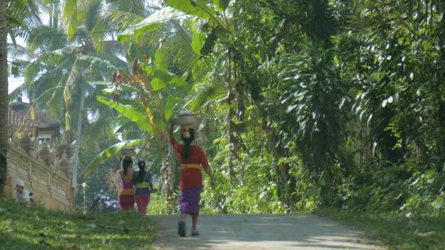 vídeos y material grabado en eventos de stock de women carrying food on their head, ubud, bali, indonesia - cultura indonesia