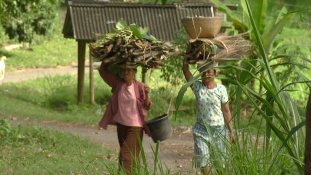 ms pan women carrying sticks on head, indonesia, bali - indonesian culture stock videos & royalty-free footage