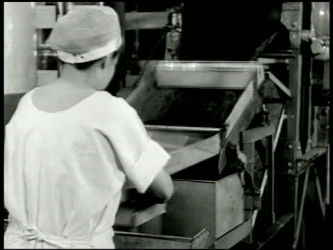 vídeos de stock e filmes b-roll de women cleaning beets in production line woman boxing up dehydrated beets shaking out of machine women breaking eggs in production line pouring eggs... - crise mundial de alimentos
