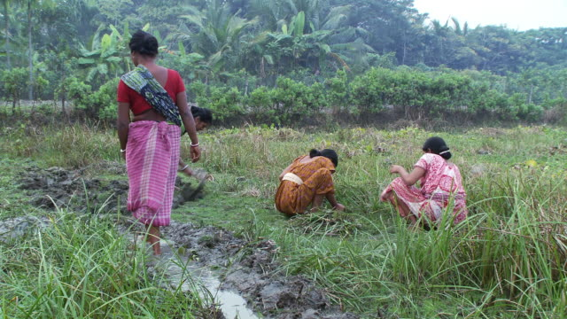 Women cultivating ground and digging irrigation ditch