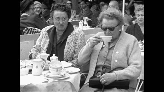 women drink coffee in cafe kranzler with dog in berlin; 1959 - 1950 1959 stock videos & royalty-free footage