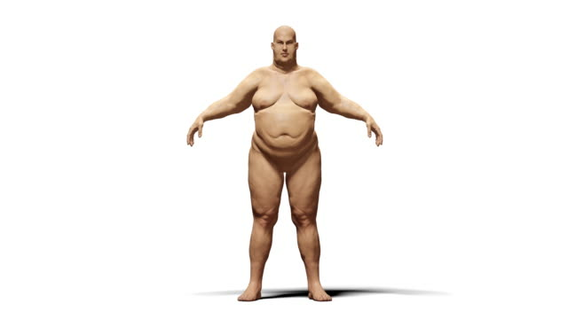 women from the process of overweight to slim morphing animation.isolated with luma matte - dieting stock videos and b-roll footage