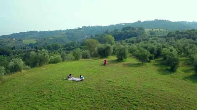 women having picnic - picnic video stock e b–roll