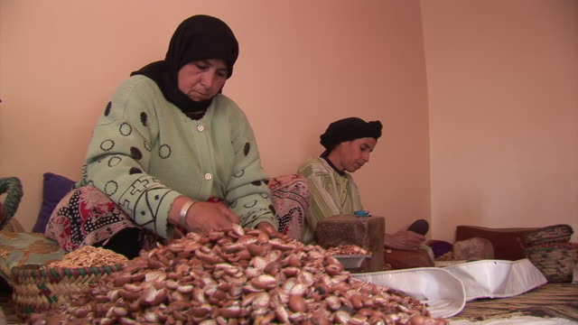 women in a cooperative openening argan nuts to make oil out of them - zuschnappen stock-videos und b-roll-filmmaterial