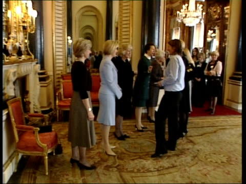 women in business reception at buckingham palace attended by senior female royals more of businesswomen including karren brady and jaqueline gold... - カレン ブラディ点の映像素材/bロール