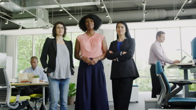 women in business - multiracial group stock videos & royalty-free footage