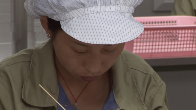 cu zo women in factory cleaning small machine parts/ dongguan, china - stick plant part stock videos & royalty-free footage