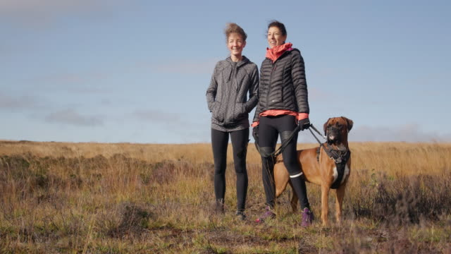 women in landscape - boxer dog stock videos & royalty-free footage