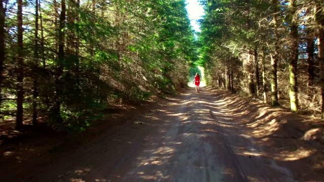 女性徒歩でレッドのドレスで、木のアレイ - 懺悔点の映像素材/bロール