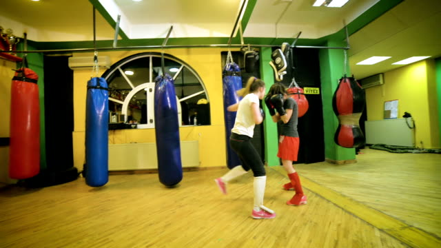 women in sport - kickboxing stock videos and b-roll footage