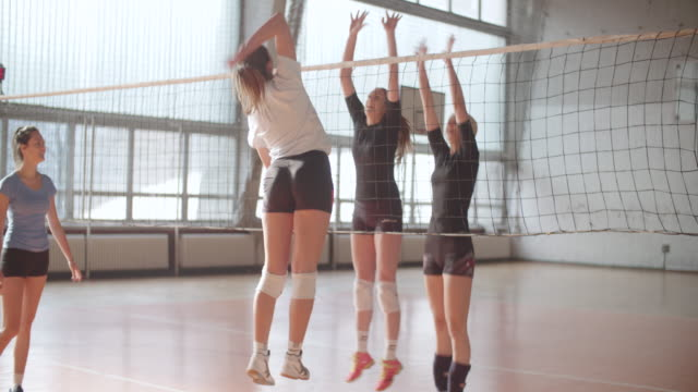 frauen im sport - volleyball - volleyballnetz stock-videos und b-roll-filmmaterial