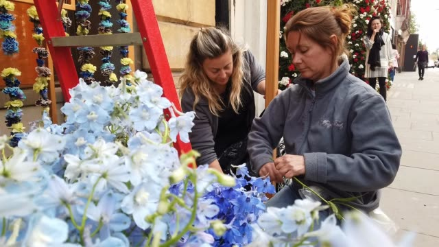 women install a floral window display at the bulgari store near sloane square as businesses unveil this years creations in support of the chelsea... - festival dei fiori di chelsea video stock e b–roll