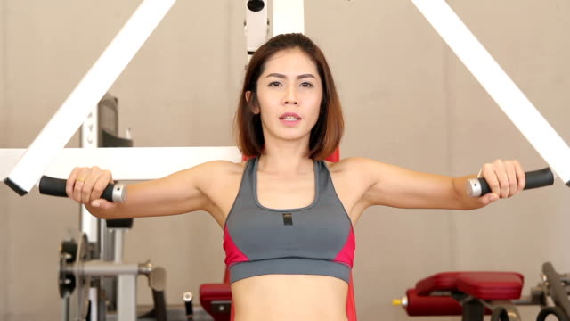 frauen ist training - menschlicher muskel stock-videos und b-roll-filmmaterial