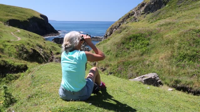 a women looking through binoculars on the pembrokeshire coast neat st daivds, wales, uk. - bird watching stock videos & royalty-free footage