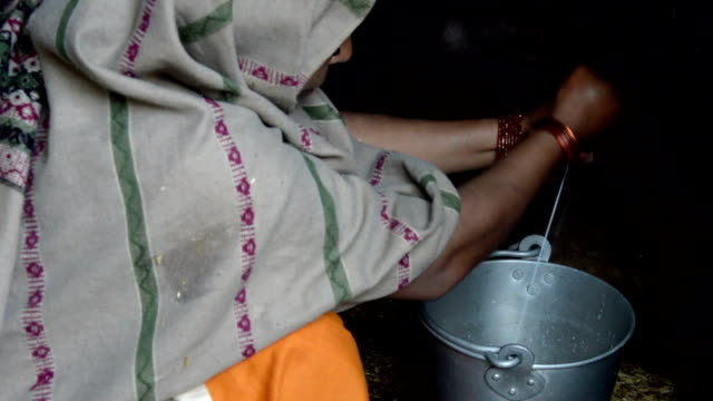 women milking buffalo - women doing farm animals stock videos and b-roll footage