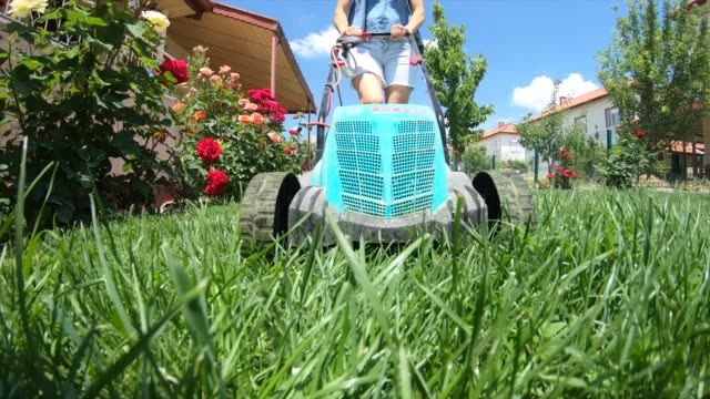women mowing the lawn - lawn stock videos & royalty-free footage