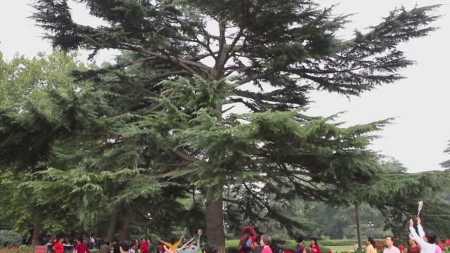 stockvideo's en b-roll-footage met ws pan td women performing dance in park/xian,shaanxi,china - benen gespreid