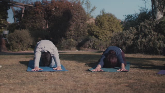 women practicing yoga outside - lawn stock videos & royalty-free footage