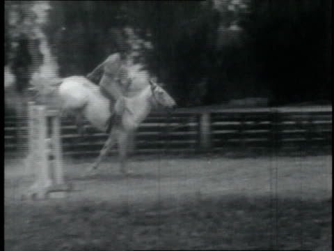 women ride horses during competition / united states - small group of animals stock videos & royalty-free footage