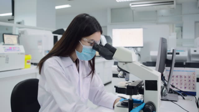 women scientist looking at platelets experimental blood sample with a microscope. - females stock videos & royalty-free footage