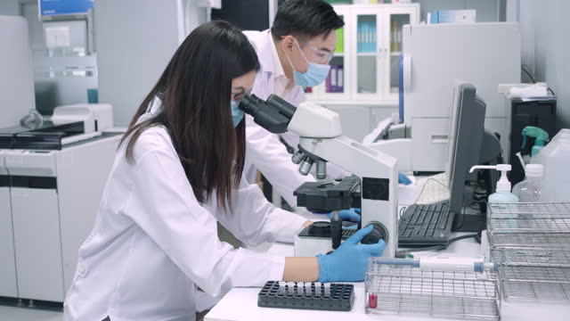 women scientist looking at platelets experimental blood sample with a microscope. - concepts stock videos & royalty-free footage