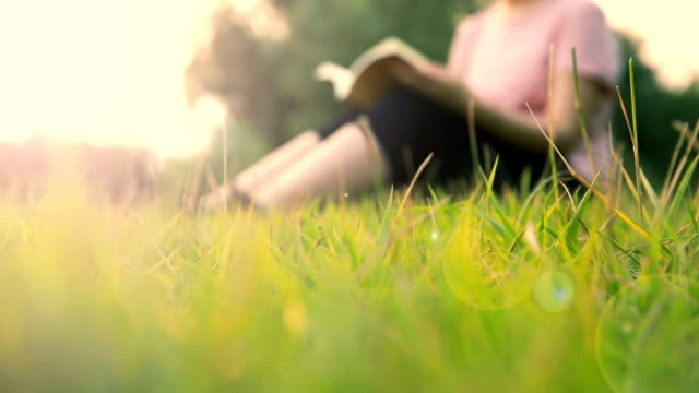 women sitting on grass reading book - lawn stock videos & royalty-free footage