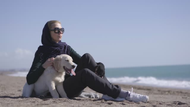women sitting wit her dog on the beach - mammal stock videos & royalty-free footage