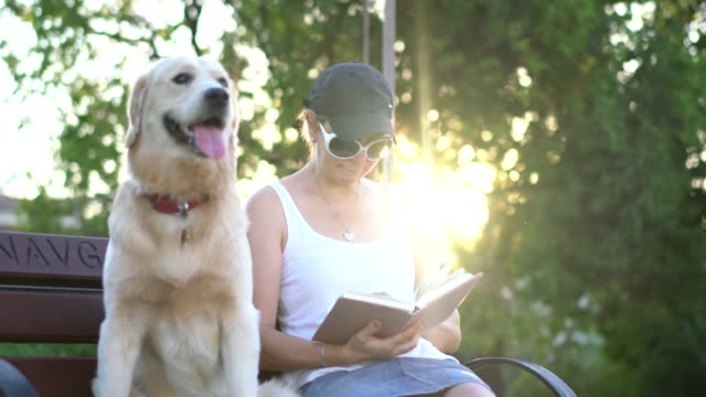 women sitting with her dog on the park bench and reading book - loyalty stock videos & royalty-free footage