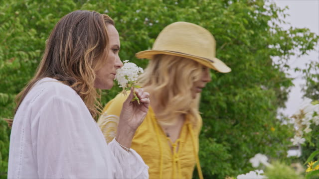 women smelling flowers - only mature women stock videos & royalty-free footage