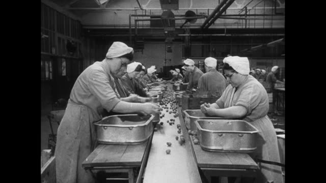vídeos de stock e filmes b-roll de women sort plums in factory; 1952 - 1950