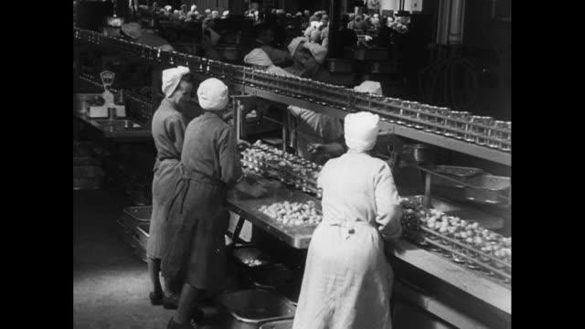 women sort plums in factory; 1952 - conveyor belt stock videos & royalty-free footage