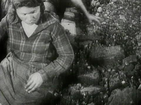 vídeos y material grabado en eventos de stock de women sorting coal at conveyor - coal mine