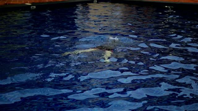 frauen schwimmen im pool - freibad stock-videos und b-roll-filmmaterial