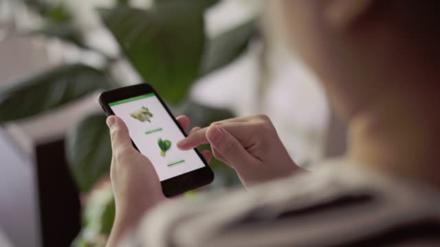 women using mobile phone order food delivery - ordine video stock e b–roll