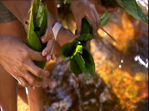 women wash fish in shallow river and wrap in large leaves for cooking amazon rainforest venezuela - south america stock videos & royalty-free footage