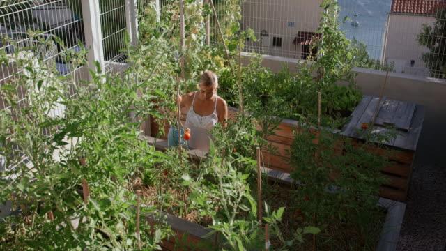 PAN Women watering plants in the sunny garden