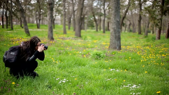women with dslr camera - photographing stock videos & royalty-free footage