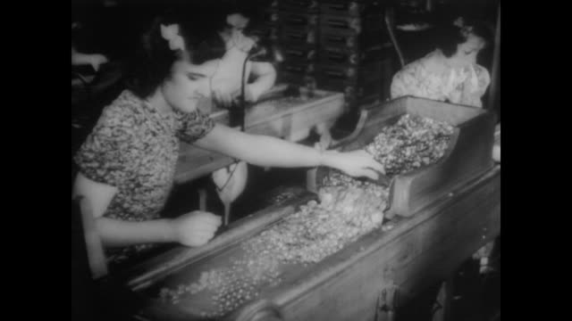 1940 women workers check through new coins - money press stock videos and b-roll footage