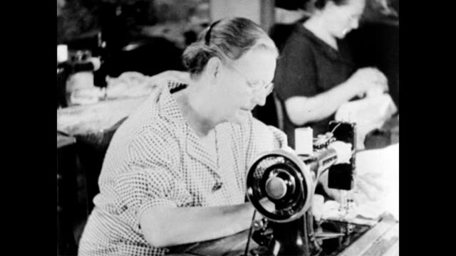/ women working behind sewing machines in a factory / female worker in canning factory / female working tool and die machine social security women... - canning stock videos & royalty-free footage