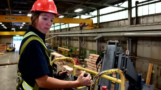 women working in industry - industria forestale video stock e b–roll