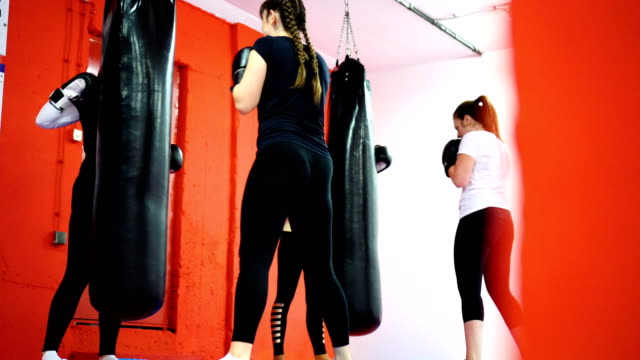 women's boxing training - exercise equipment stock videos and b-roll footage