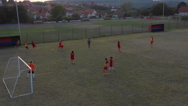women's soccer team training on soccer field - goalkeeper stock videos & royalty-free footage