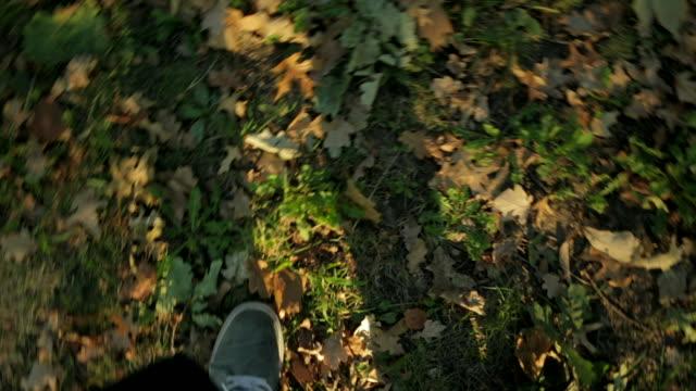 Wondering feet on the forest floor