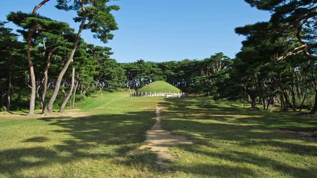 wonseongwangreung (tomb of king wonseong) in gwoereung royal tomb / gyeongju-si, gyeongsangbuk-do, south korea - place concerning death stock videos & royalty-free footage