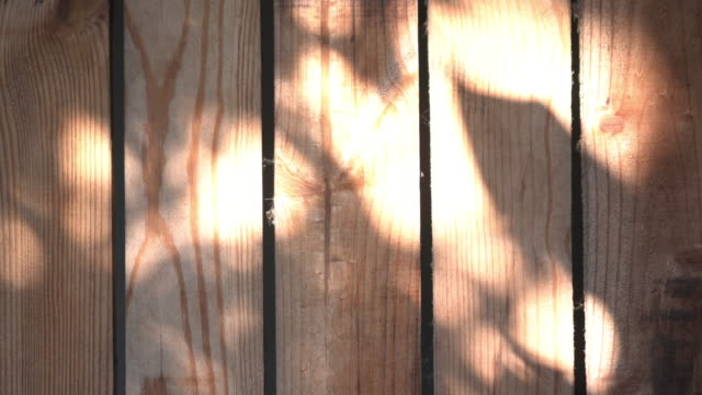 wood and light moving copy space - five objects stock videos & royalty-free footage