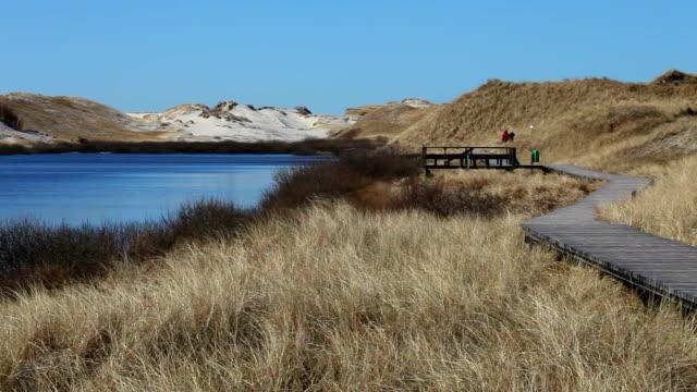 wood bridge with people in amrum - north frisian islands stock videos & royalty-free footage