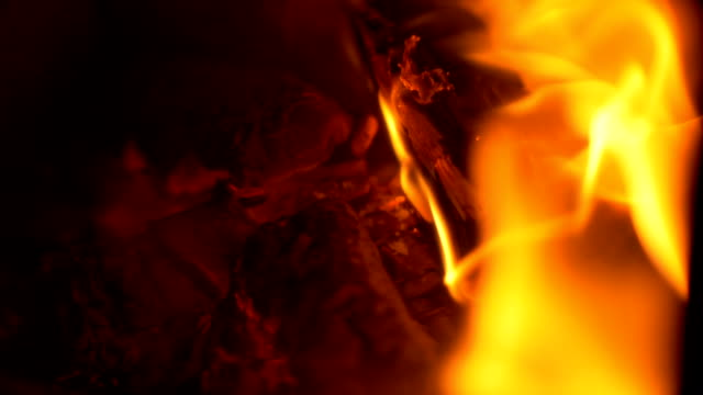 vídeos de stock e filmes b-roll de wood burning in fireplace - madeira material