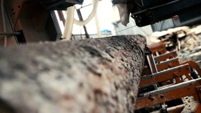 hout snijden machine bestuur log